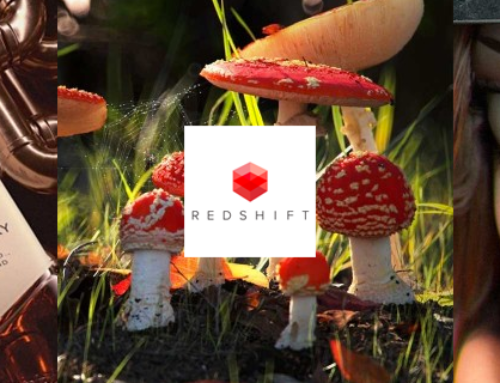 Redshift is the world's first fully GPU-accelerated, biased renderer.